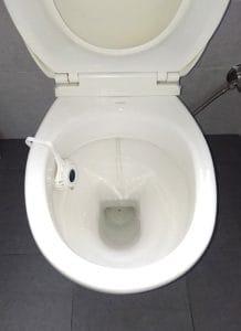 white toilet bowl